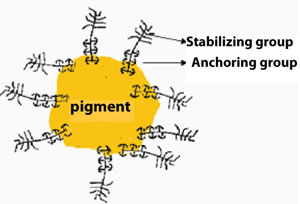 Schematic Presentation Interaction Polymeric Dispersing Agent and onto Pigment