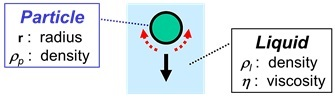 Sedimentation of a Solid Particle in a Liquid