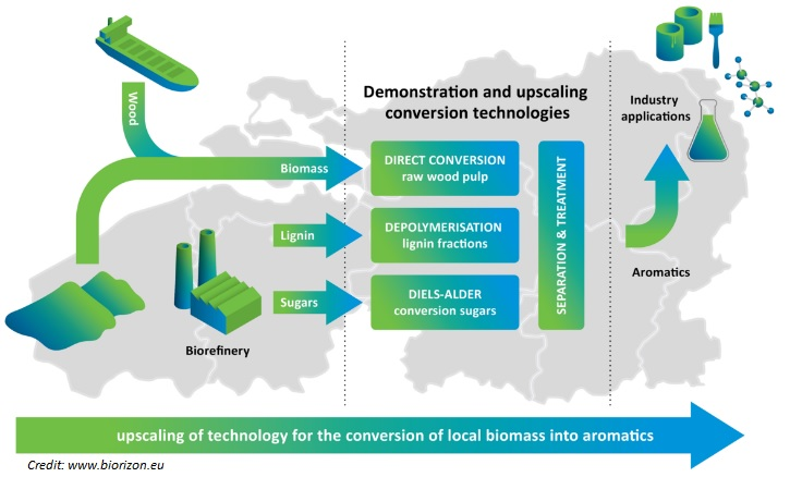 Upscaling of Technology for Developing Wood Biomass-derived Products