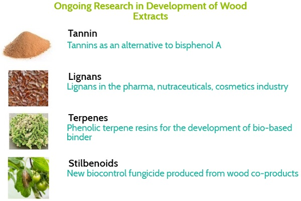 Advancement in Wood Extracts