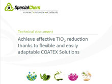 Achieve effective TIO2 reduction thanks to Coatex Solutions