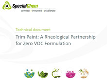 Trim Paint Solution for zero VOC formulations