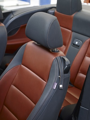 Auto Leather Coatings