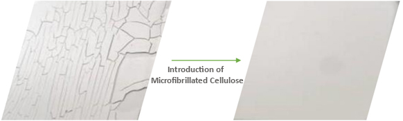 Biobased Microfibrillated Cellulose for WB coatings