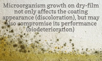 Effect on microorganism growth on dry-film